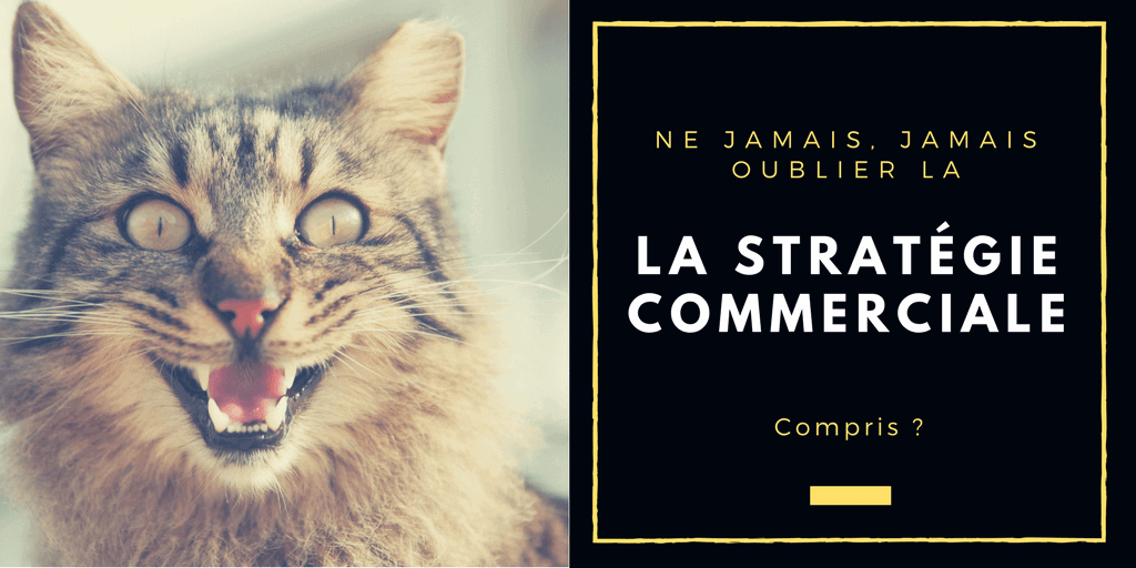 la strategie commerciale ecommerce